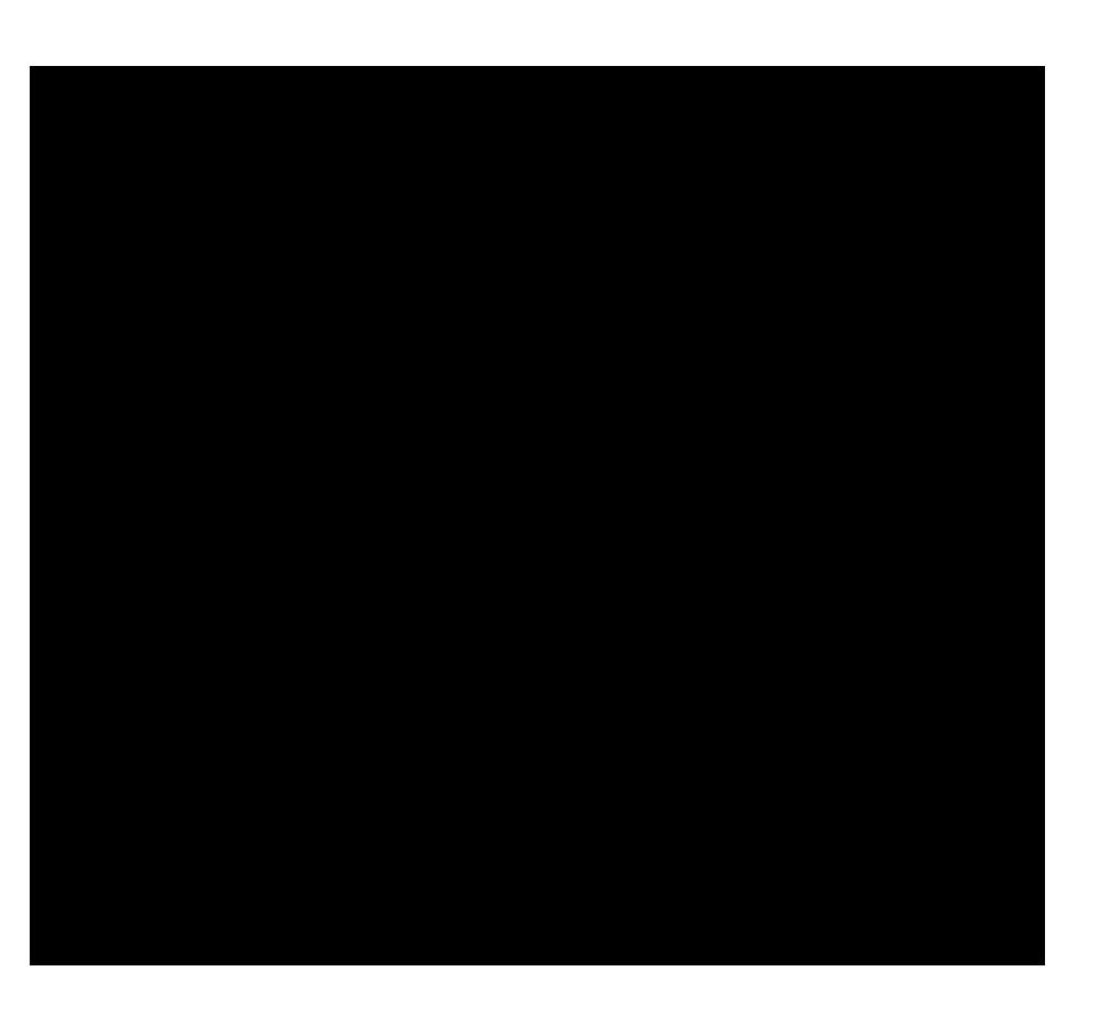 Denitza-Tanz